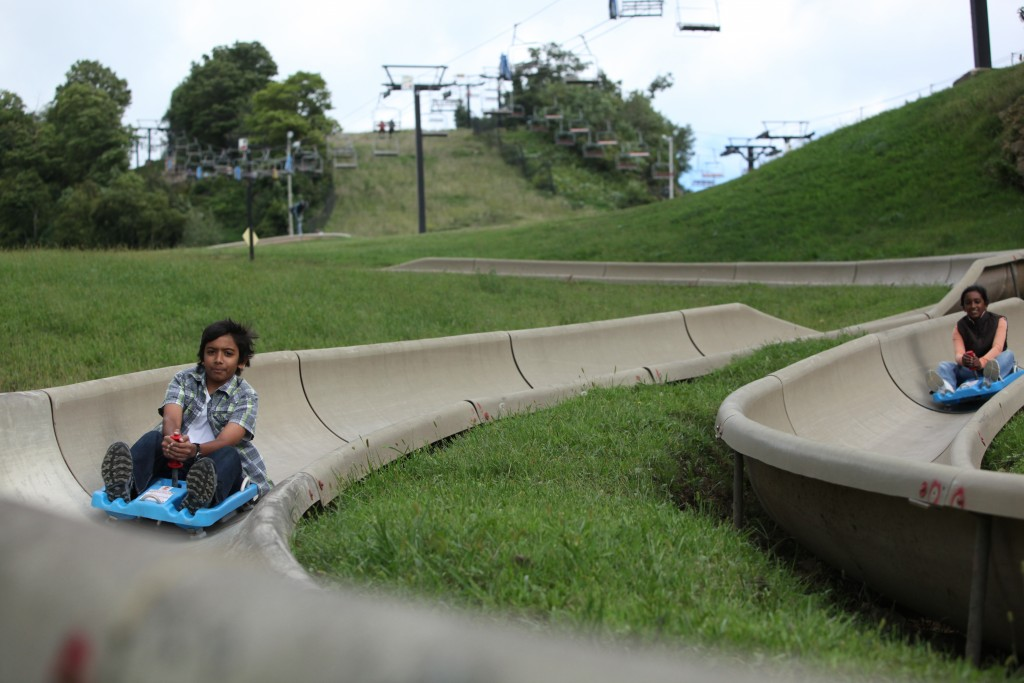 Alpine Slide | Chestnut Mountain Resort